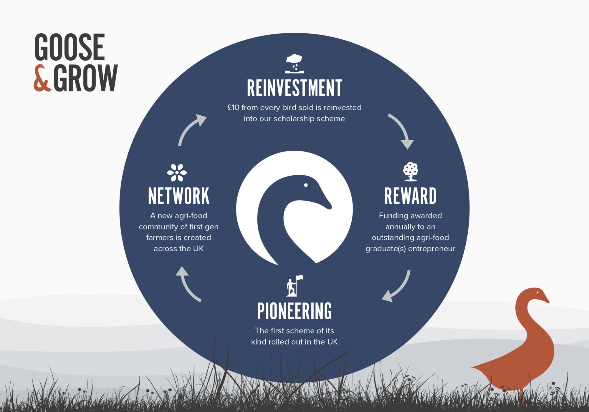Goose & Co - Branding, Web Design, Digital Marketing & Social