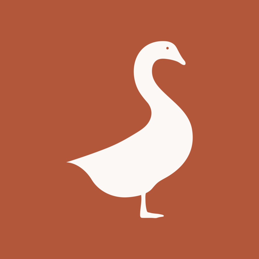 Goose & Co - Branding, Web Design, Digital Marketing & Social