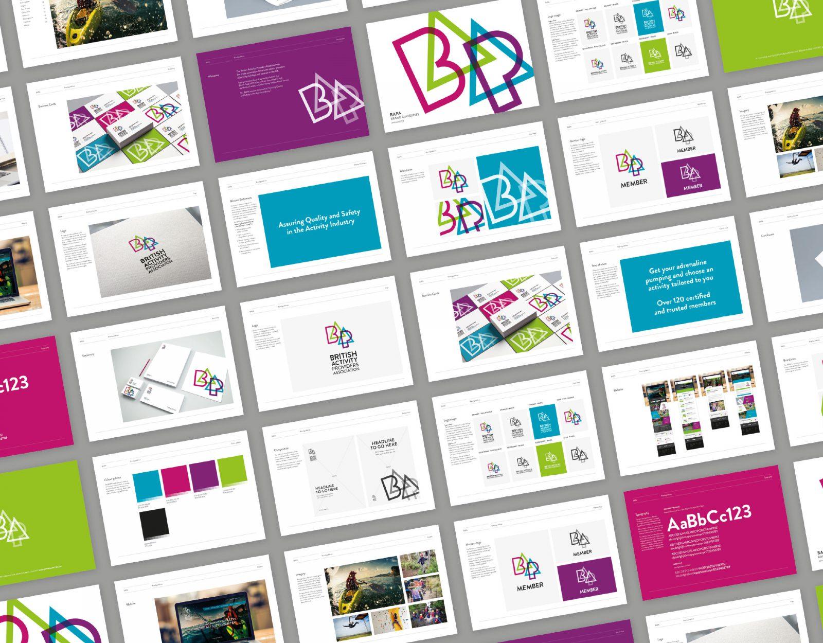BAPA brand guidelines